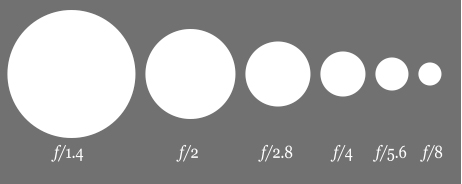Photography 101... the Basics! Aperture